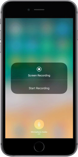 ios_11_settings_control_center_screen_recording_enabled